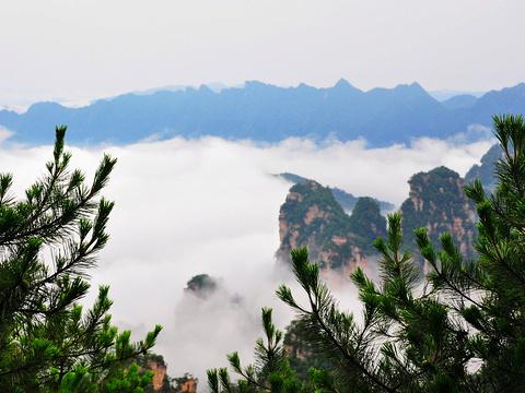 乌龙寨旅游景点图片