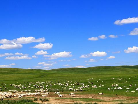 阿尔山旅游景点图片