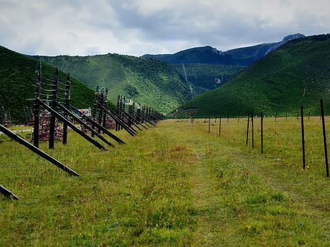 香格里拉大草原旅游景点图片