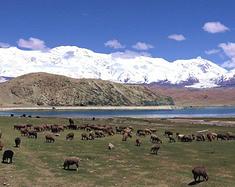 63天23500公里的新疆之旅(2)