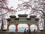 肇庆旅游景点亚博竞彩足球网站图片