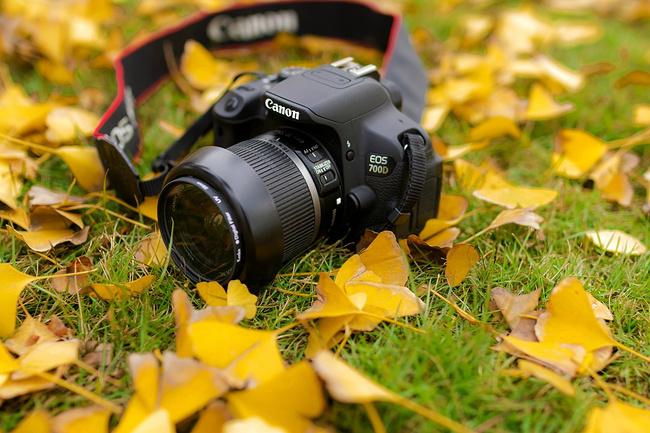 摄影器材及行程行李图片