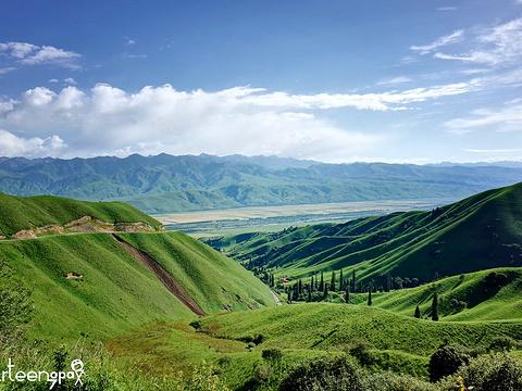 那拉提旅游风景区旅游景点图片