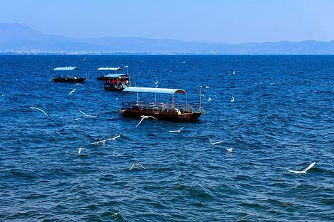 抚仙湖国际旅游度假区