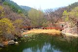 北京植物园樱桃沟