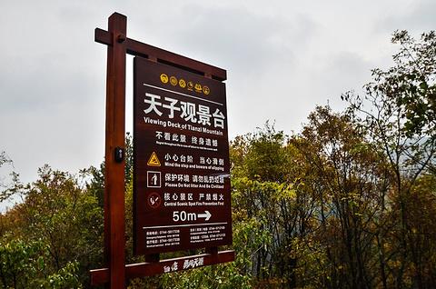 天子山旅游景点攻略图