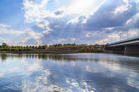老多瑙河的图片