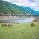 白马王朗国家级自然景区