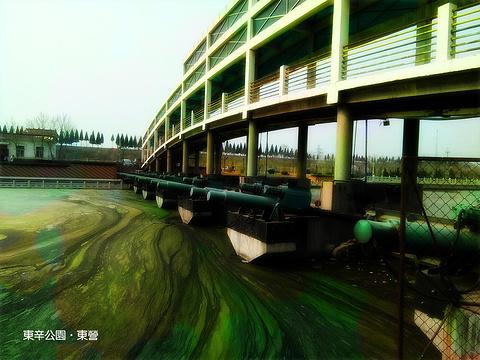 东辛公园旅游景点攻略图