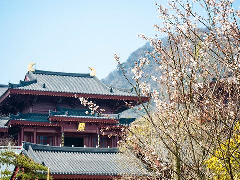 牛首山文化旅游区旅游景点图片