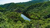 桃源仙谷自然风景区