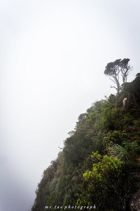 霍顿平原国家公园图片