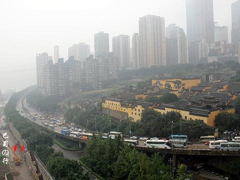 菜园坝长江大桥旅游景点图片