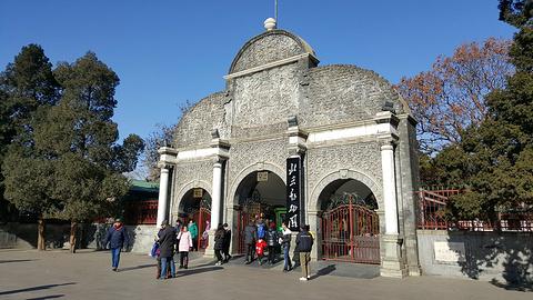 北京动物园的图片