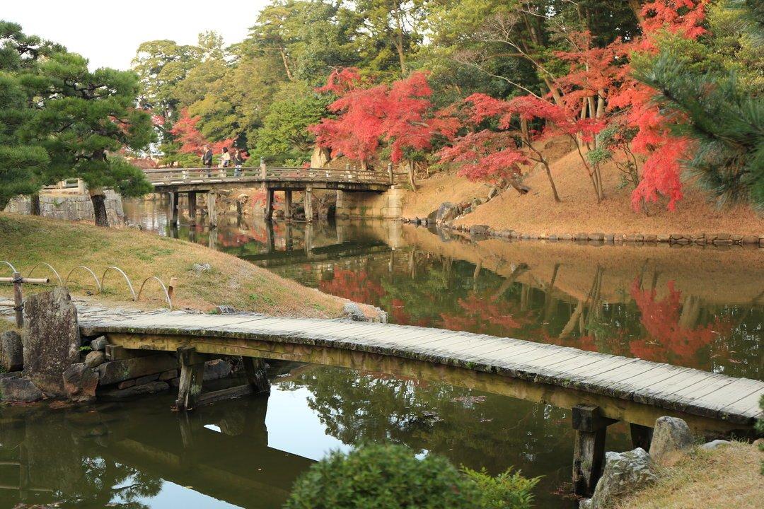 踏遍红叶,访古探今——日本文化深度游