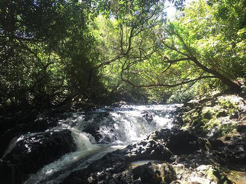 哈雷阿卡拉国家公园旅游景点攻略图