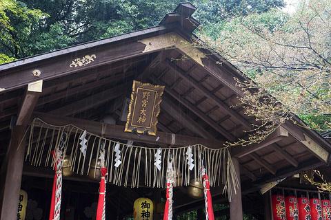 野宫神社的图片