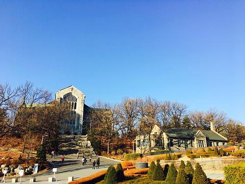 弘益大学旅游景点图片