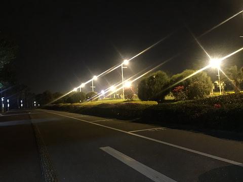 鹭江之夜(厦门旅游客运码头)旅游景点图片