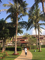 丽思卡尔顿酒店sandbar