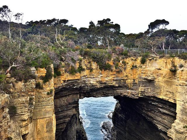 """""""地址: Tasman Arch, 20 ..._塔斯曼拱门(Tasman arch)""""的评论图片"""