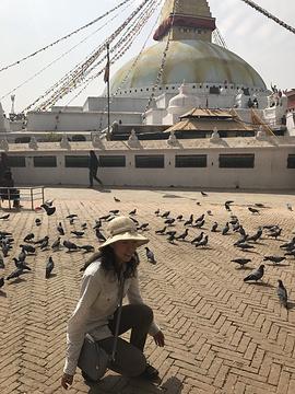 博纳佛塔旅游景点攻略图