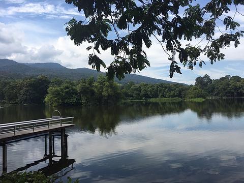 清迈大学静心湖旅游景点图片