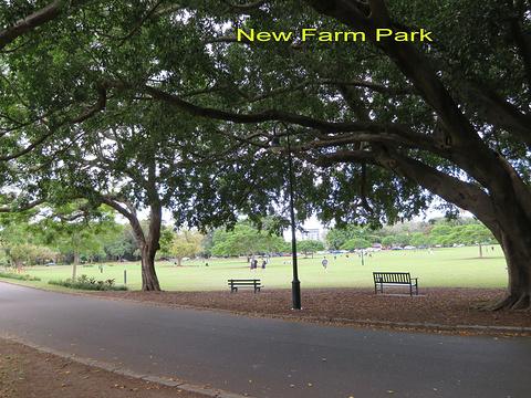 新农场公园旅游景点攻略图