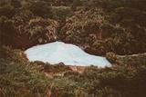 阳明山牛奶湖
