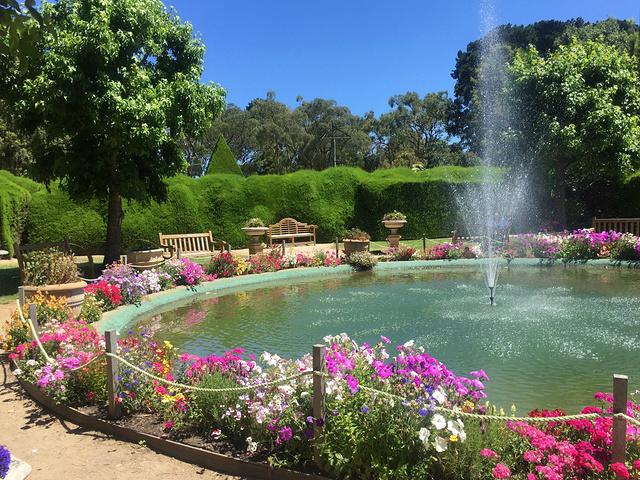2017雅思迷宫和薰衣草花园 一个超级小的花园... 雅思迷宫和薰衣草花...图片 123753 640x480