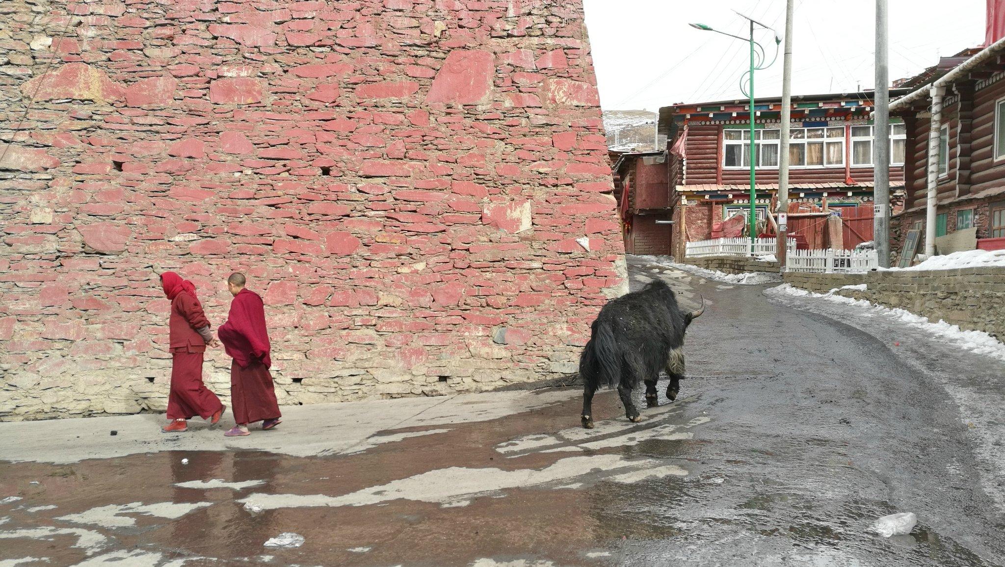 重庆成都一路向西——佛国色达之旅