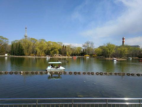 顺义公园旅游景点图片