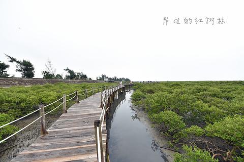 北海金海湾红树林生态旅游区旅游景点攻略图