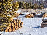 乌兰布统草原旅游景点攻略图片