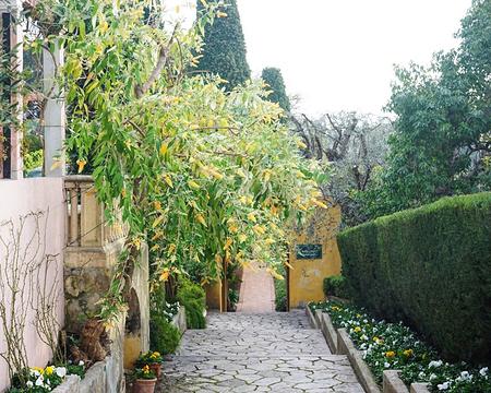 罗斯柴尔德花园别苑的图片