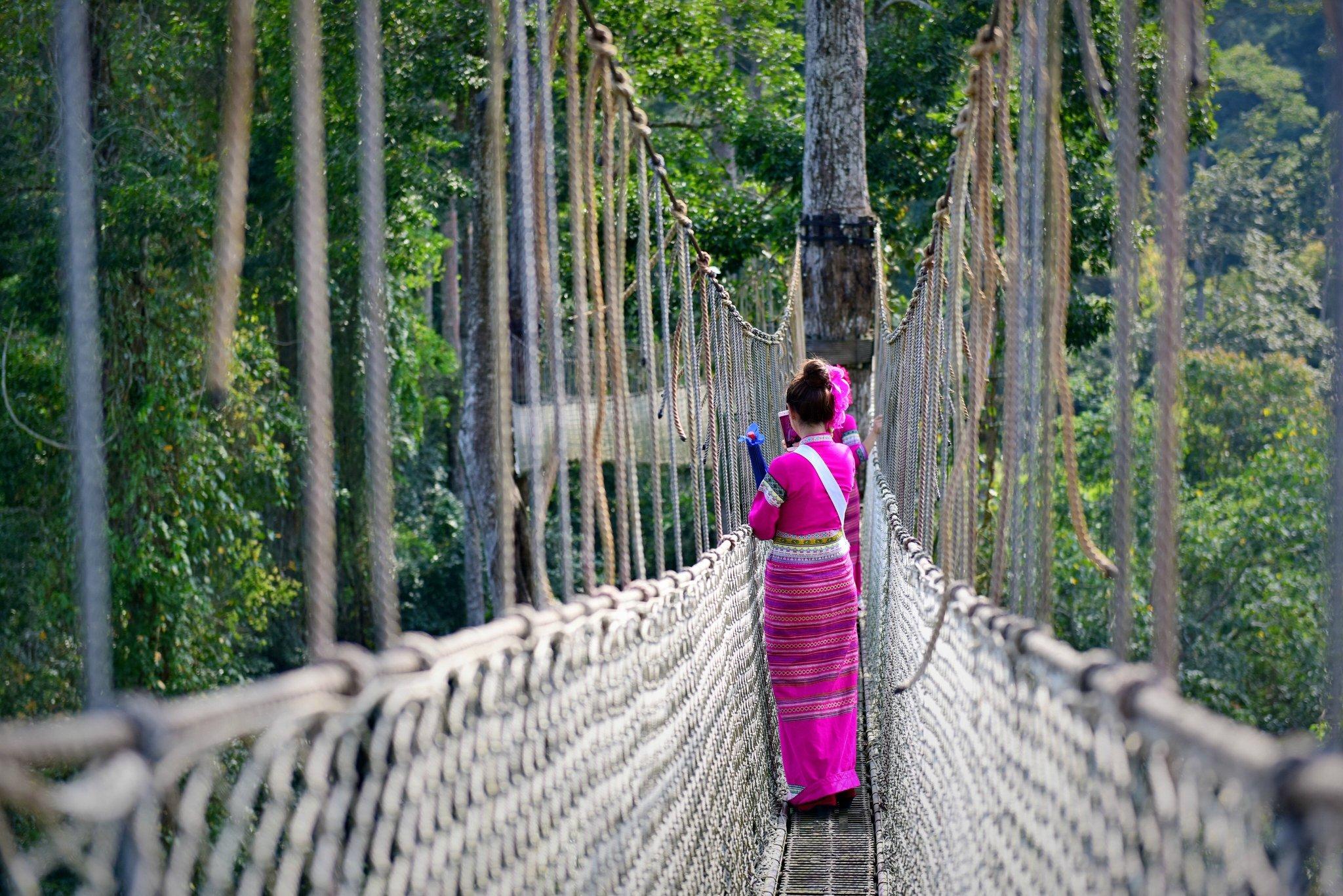 属于中国的热带雨林,发现西双版纳的美((去一次就会爱上的地方)