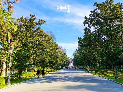 玛丽亚·路易莎公园旅游景点图片