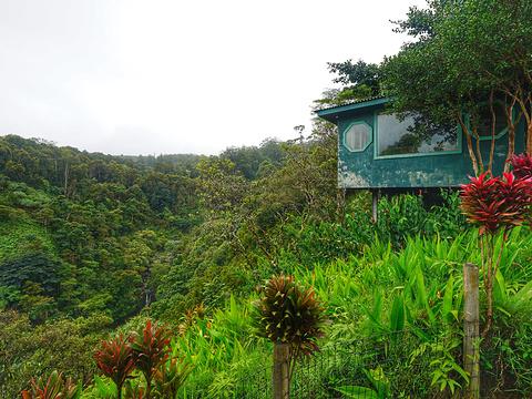 伊顿花园旅游景点图片