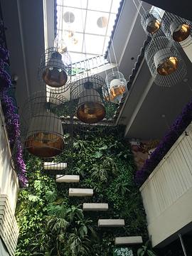 双廊转角食光·花园餐厅旅游景点攻略图