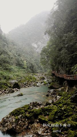 """""""我们估计是景区最早的几拨游客之一,所以步行在栈道上感觉周围格外清静。最美的峡谷,在雨天_恐怖峡""""的评论图片"""