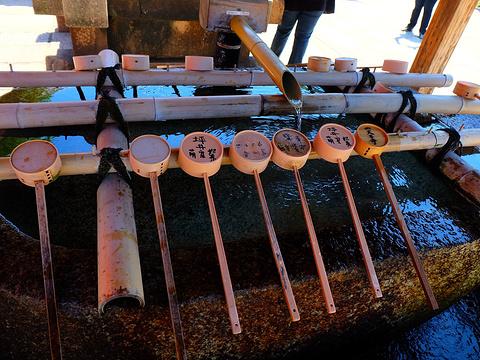 四天王寺旅游景点图片