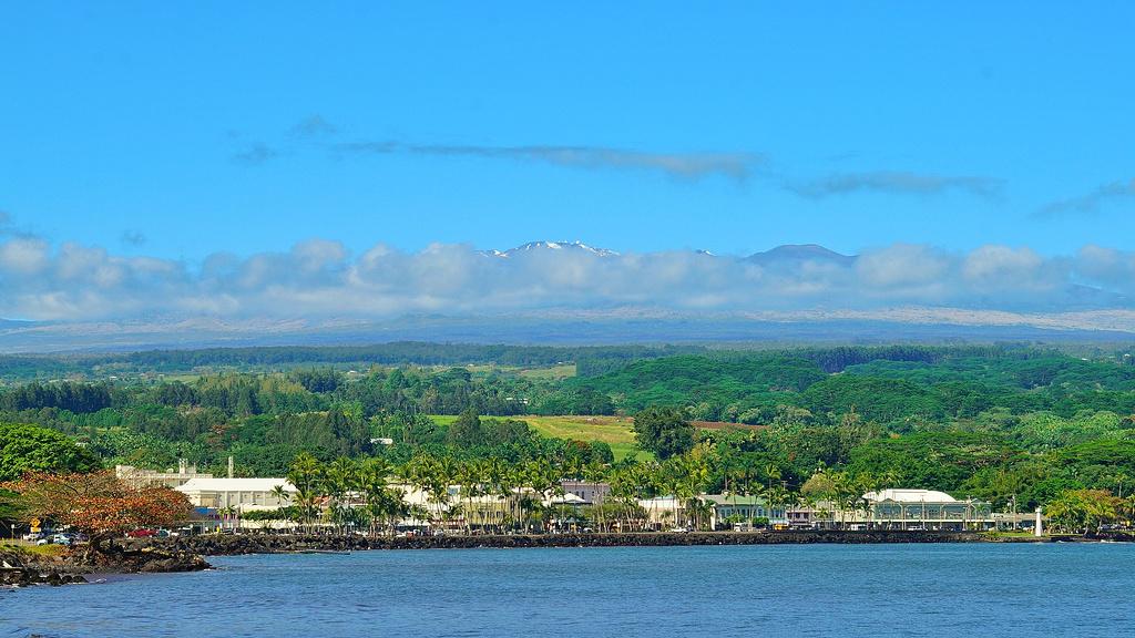 美洲 美国 夏威夷州 希洛市 - 西部落叶 - 西部落叶