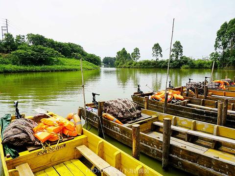 华侨城古劳水乡文化生态旅游度假区旅游景点图片