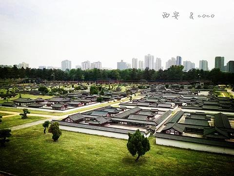 大明宫遗址博物馆旅游景点图片