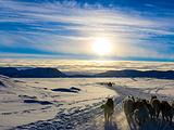 格陵兰岛旅游景点攻略图片