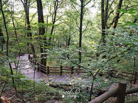 天目湖山水园旅游景点图片