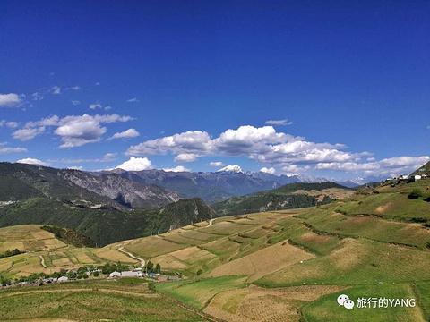 哈巴雪山的图片