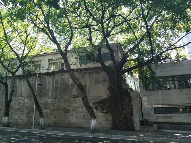 且非常小资的路,去重庆市人民大礼堂和三峡博