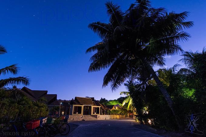 清晨的橘子酒店图片