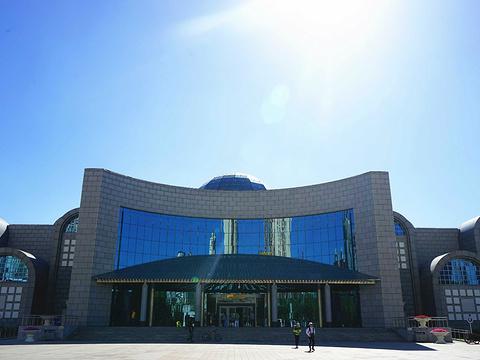 新疆维吾尔自治区博物馆旅游景点图片
